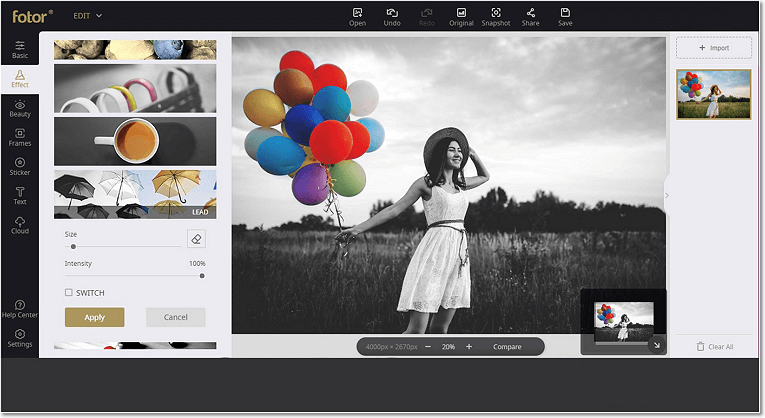 Use online application to create a Color Splash effect