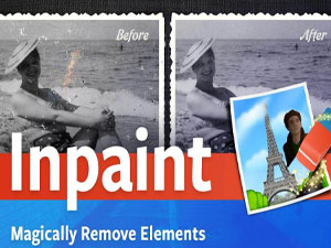 Inpaint Review