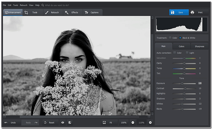 Move the Tone sliders to adjust the black and white effect
