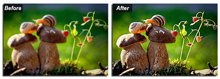 How to edit blurry photo: before-after